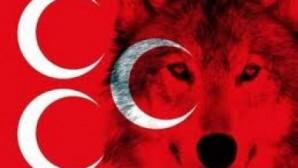 YEŞİL SAHALARA 'ÜLKÜCÜ' KULÜP