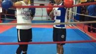 Milli boksörler Rio Olimpiyatlarına hazırlanıyor